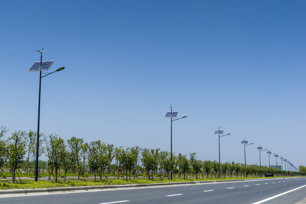 Wind and solar powered lamp posts