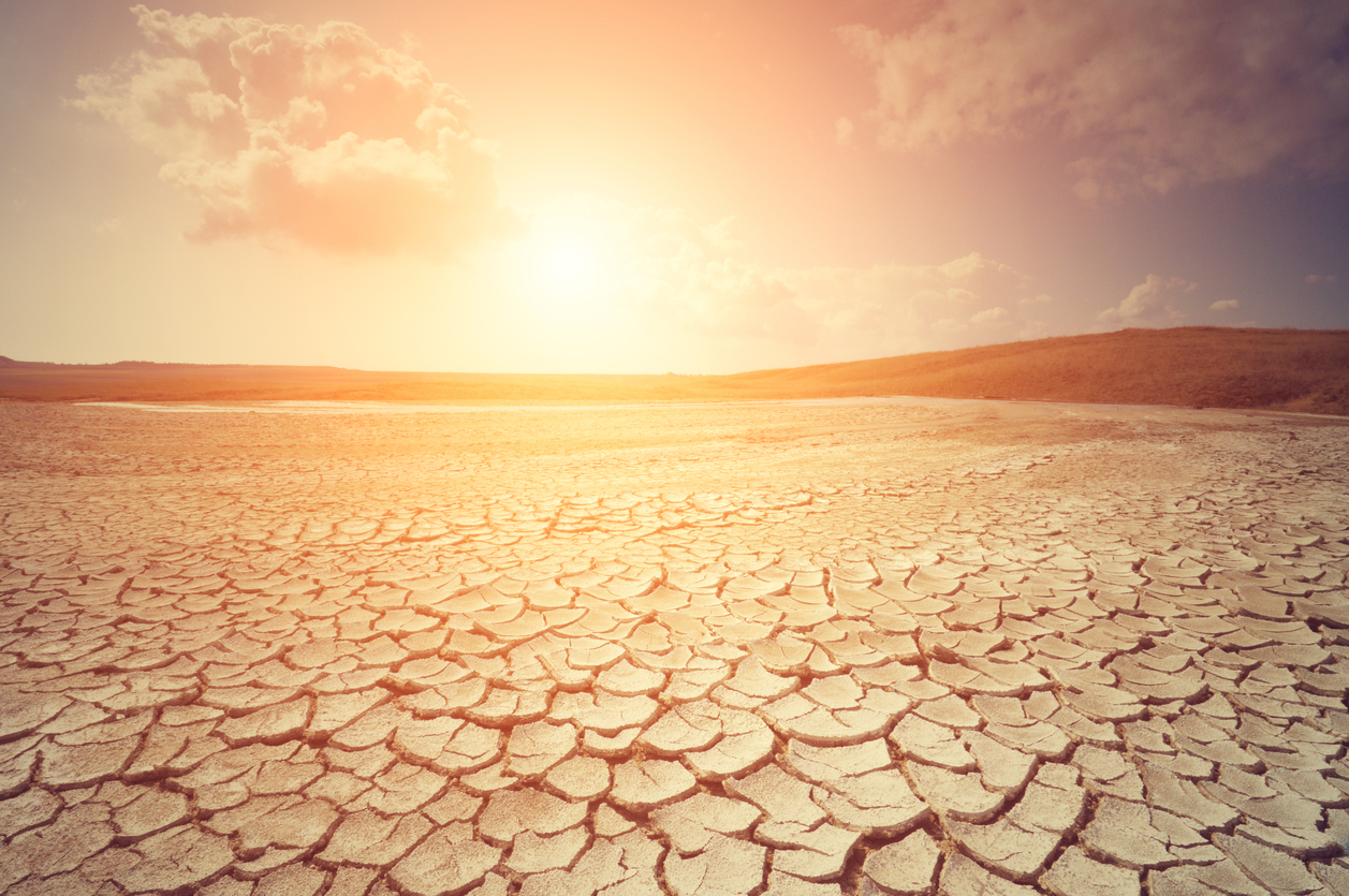 dried out earth with sun blazing