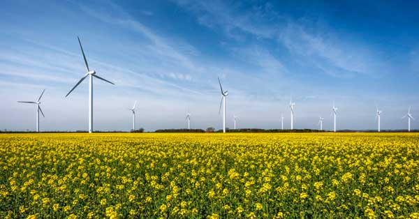 Energy forecast can help take advantage of a greener grid ...