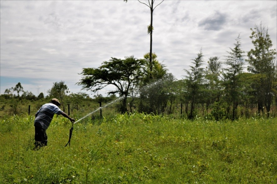 Daniel using water on his farm