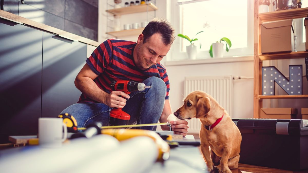 man making home improvements while his dog watches