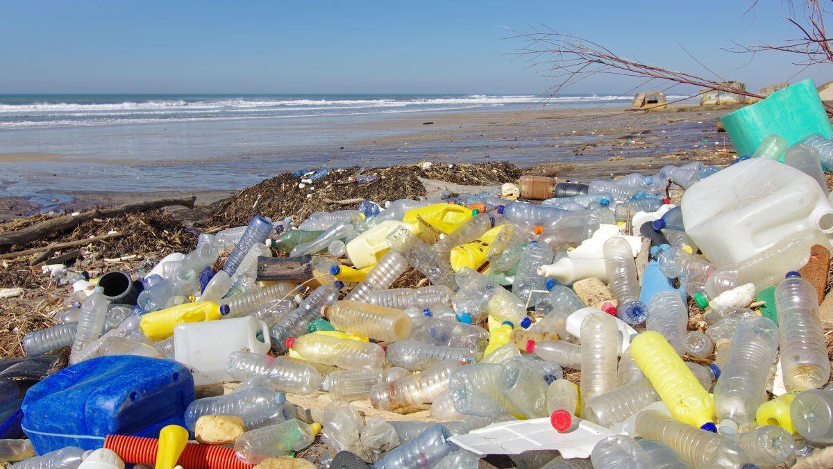 Beach covered in plastic bottles