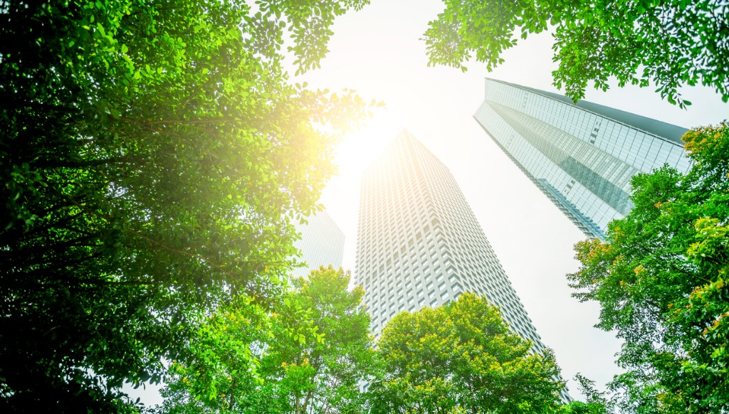 Business towers and green leaves picture