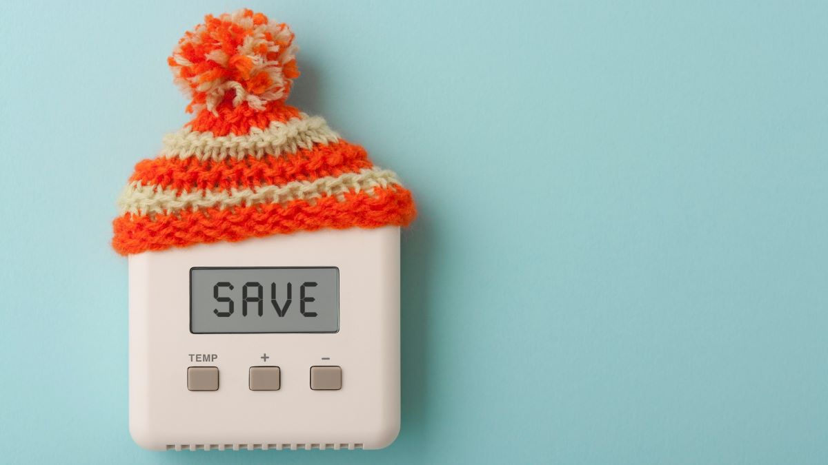 thermostat with a bobble hat, with the word SAVE on its display